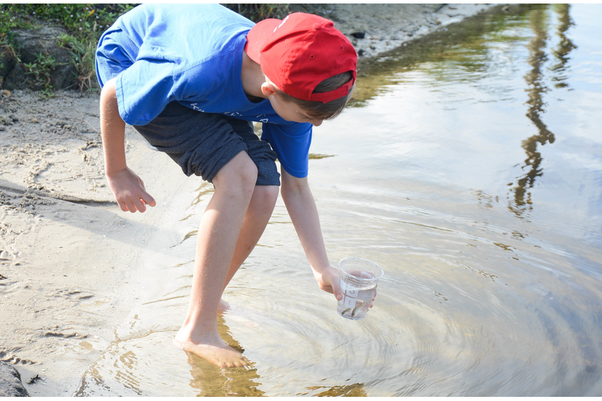 Four-grader Kaleb Shaw gets ready to release a striped bass into the water. Photo by Paige Wilson