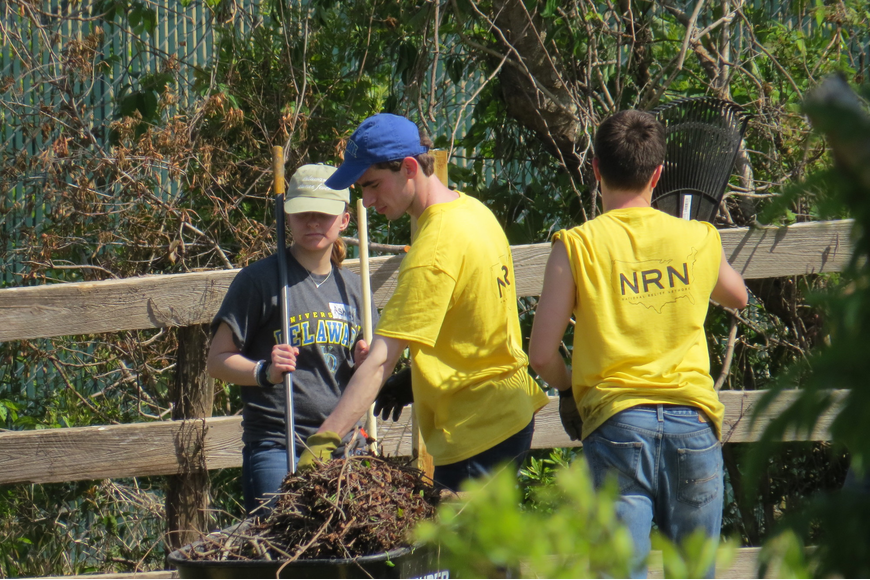 Students from the University of Delaware partnered with the National Relief Network to help cleanup hurricane damage at P&L Stables. Photo courtesy of Joan McDevitt
