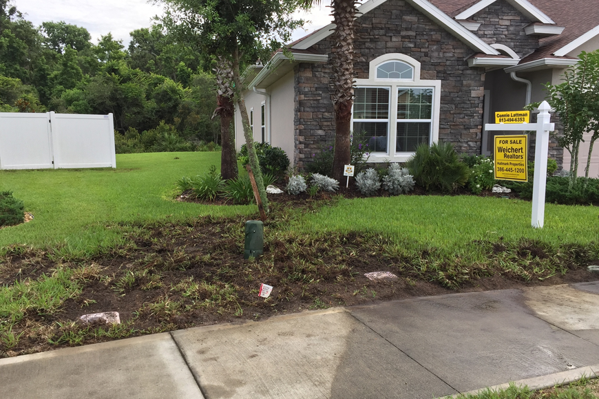 Hogs have damaged the sprinkler line, cable line and lawn in their front yard. Courtesy photo