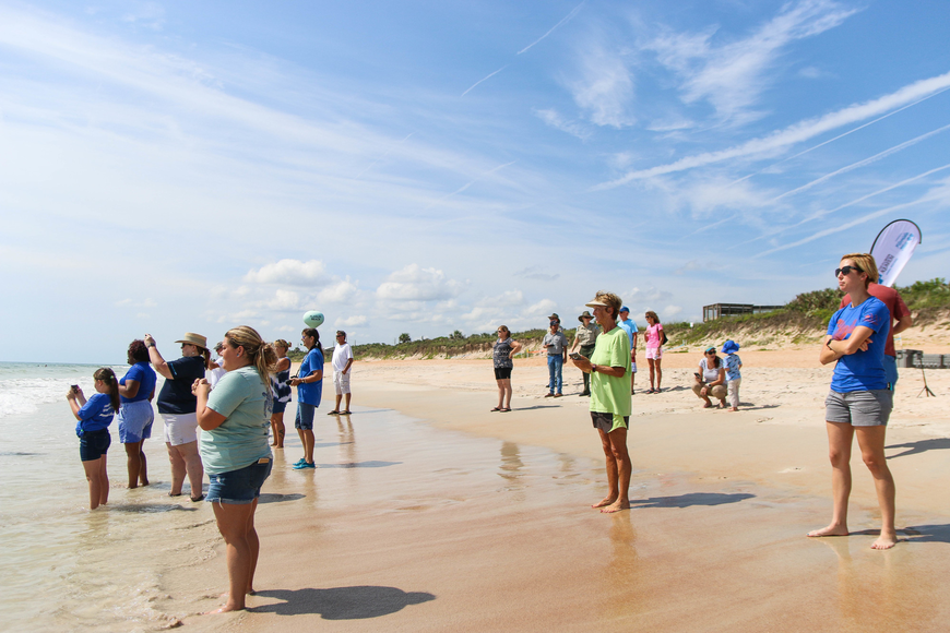 A crowd watches the sea turtle release from the shore. Photo by Paige Wilson
