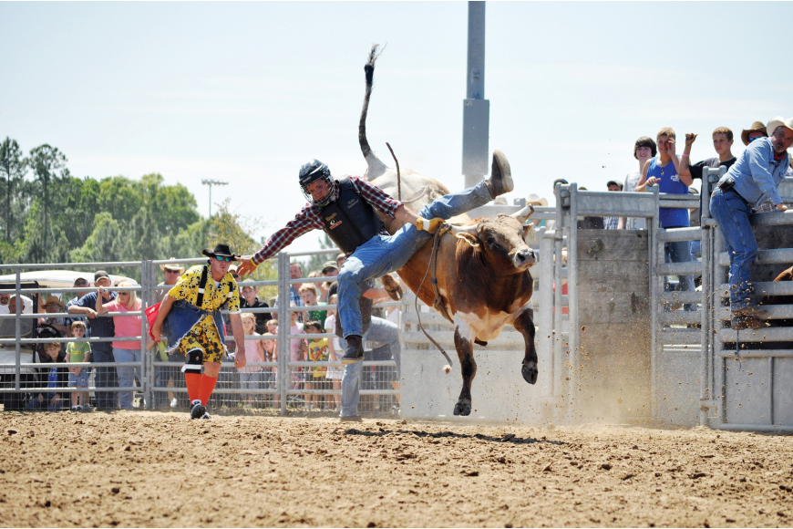 Trae Coates attempts to hang on March 26, during the senior bull-riding contest at the 56th-annual Cracker Day festivities. The bull bested everyone in this category.